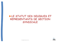 statut-DS